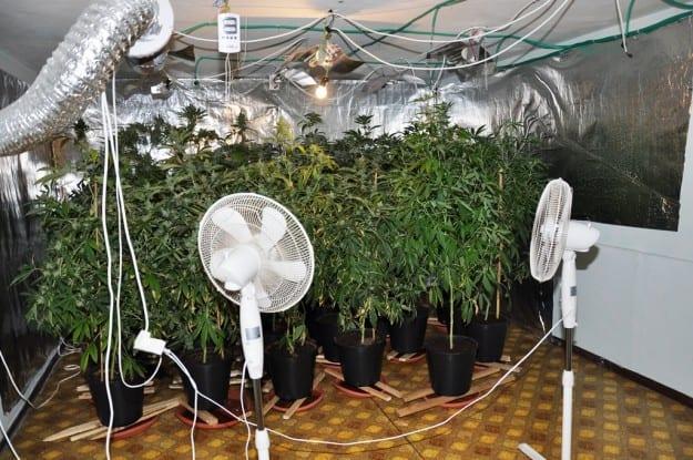 מעבדת הסמים שנחשפה