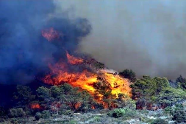 השריפה משתוללת בכרמל