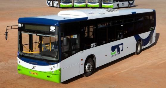 האוטובוס של חברת קווים (צילום: קווים)