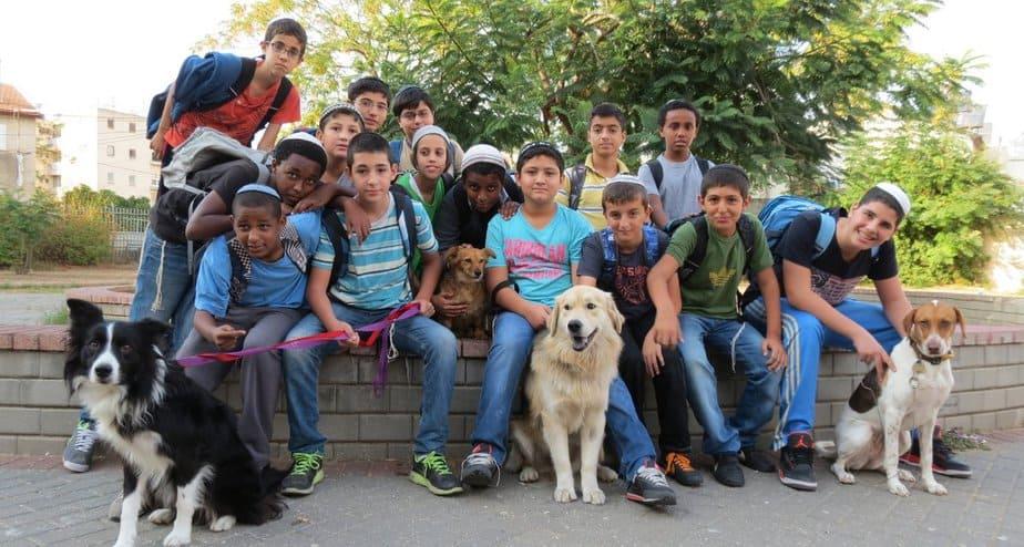 """תלמידי אמי""""ת בר אילן והכלבים (צילום: אבישי מזרחי)"""
