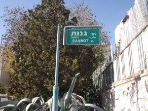 רחוב גנות בנצרת עילית