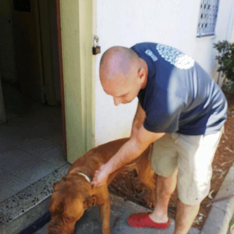 הכלב שב לבעליו ( צילום: עיריית חדרה)