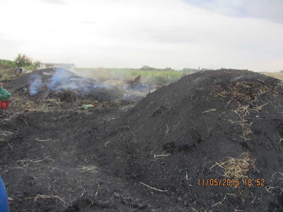 המפחמה בפעילות (צילום: המשרד להגנת הסביבה)