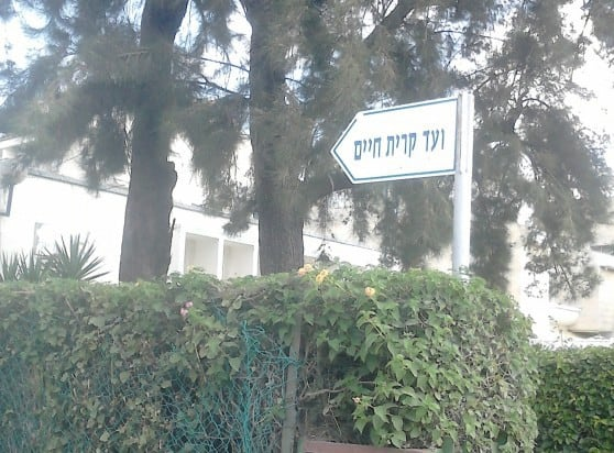 וועדי קרית חיים וקרית שמואל התאחדו נגד עיריית חיפה (צילום: נטע פלג
