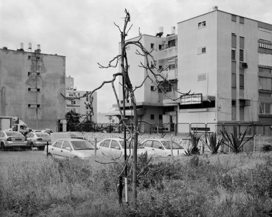 הבניינים של שדרות טרומן, קרית חיים מערבית (צילום: יעל ברקת)