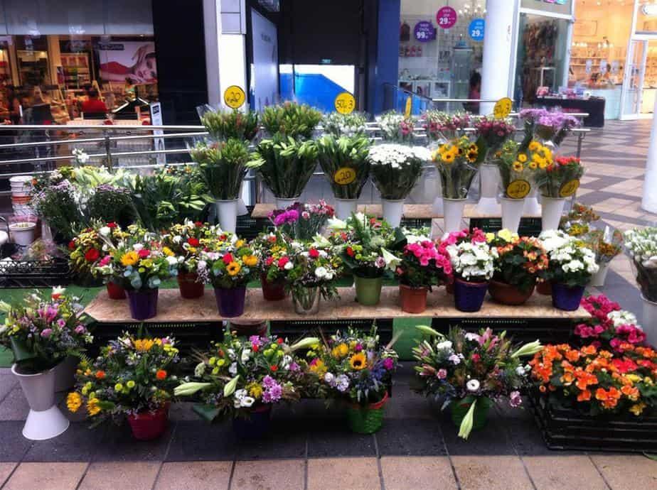 שוק פרחים לראש השנה. חוצות המפרץ אאוטלט (צלם יובל בן שלום)
