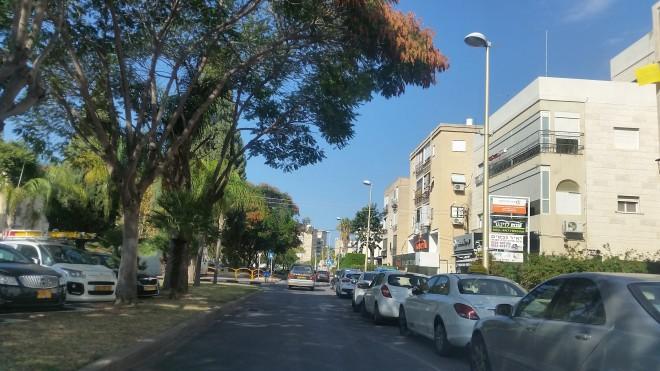 מגורים, עסקים ומשרדים. שדרות גושן צילום: רותם כבסה