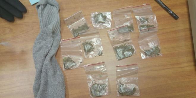 הסמים שנתפסו (צילום: משטרת ישראל)