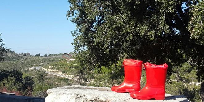 צילום: עמותת התיירות כרמלים