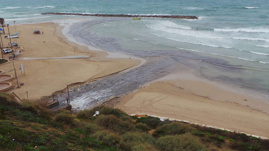 """""""בעיה מביכה"""". חוף הרצל (צילום: הנרי כהן)"""