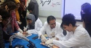 ניתוח מוח משותף שערכו תלמידי רבין בקרית ים עם תלמידים משפרעם (צילום: דוברות עיריית קרית ים)