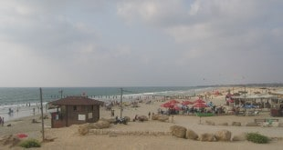 חוף ינאי (צילום: רותי ברמן)