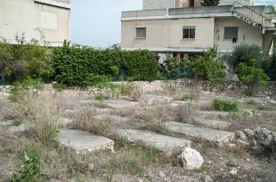 הזנחה, עזובה, עשבים שוטים. בית העלמין היהודי העתיק בשפרעם (צילום: דורון גולן)