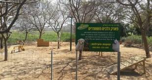 פארק חדש לכלבים (צילום: דוברות ביאליק)