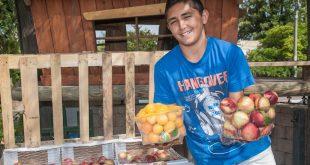 שוק פירות מהחקלאי ישירות לצרכן בכפר ביאליק (צילום: דורון גולן)