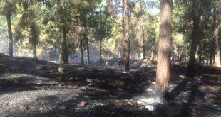 """שריפה בשפרעם. צילום כב""""ה מחוז צפון"""