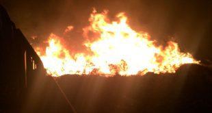 שריפה משתוללת. צילום כיבוי אש מחוז חוף