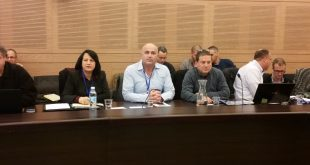 ישראלי, דוידוביץ בועדת הכלכלה (צילום: דוברות מטה אשר)