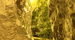בתוך הסלון. מעבדת הסמים (צילום דוברות המשטרה)