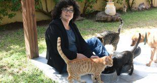 עבור אלה שלא יכולים לדבר. חגית גלאי יזהר והחתולים. צילום: הילה אייזינגר