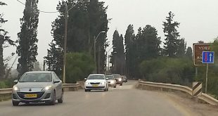 גשר צר מאד צילום רותי ברמן