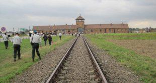 בירקנאו אושוויץ צילום רותי ברמן