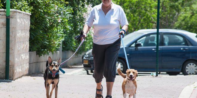יהודית אלבז עם הכלבים חומי וליידי. צילום: דורון גולן