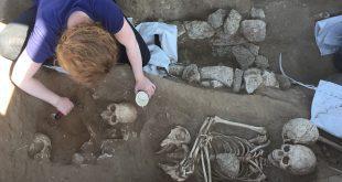 המון גברים, אפילו לא אישה אחת. שלד שנמצא בחפירות. צילום: מועצת חוף הכרמל