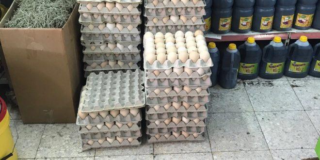 הביצים שהוחרמו (צילום דוברות המשטרה)