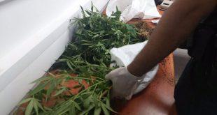 סמים בדירה (צילום דוברות המשטרה)