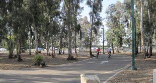 """""""אין כל כוונה מיידית לבנות את מה שהתוכנית מתירה"""". פארק האופניים (צילום: רותי ברמן)"""