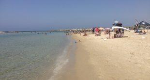 רוחצים התעלמו. חוף דור (צילום: נירית שפאץ)