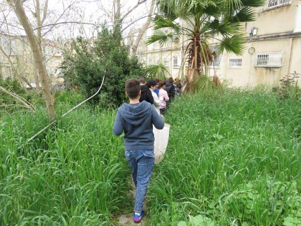תמיר, בית ספר ירוק. צילום: דוברות העירייה