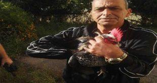 התרנגול המקרקר בדרך לחי-פארק. צילום: דוברות העירייה