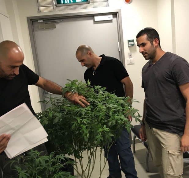 הסמים שנתפסו על ידי המשטרה