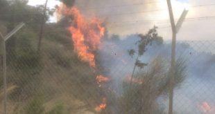 שריפה משתוללת (צילום דוברות כבאות)