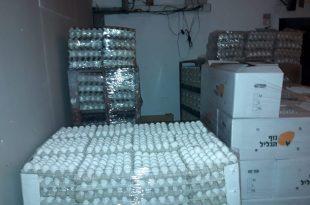 תפיסת ביצים במחסן נטוש בקרית אתא. צילום: משרד החקלאות
