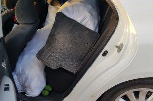 שקי האבוקדו שנתפסו ברכבים (צילום: דוברות המשטרה)