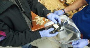 הברחת סמים בפסלים ממקסיקו. צילום דוברות משטרת ישראל