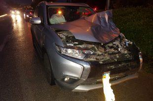 תאונת דרכים בגלל פרה. צילום: איחוד הצלה כרמל ואשר
