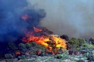 שריפה צילום ארכיון