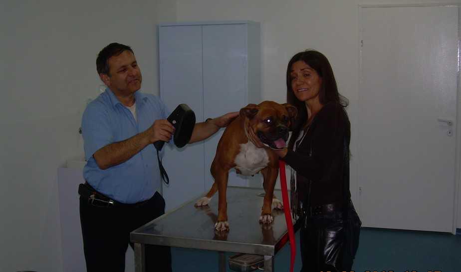 מרפאת הכלבים בנהריה   (צילום: דוברות עיריית נהריה)