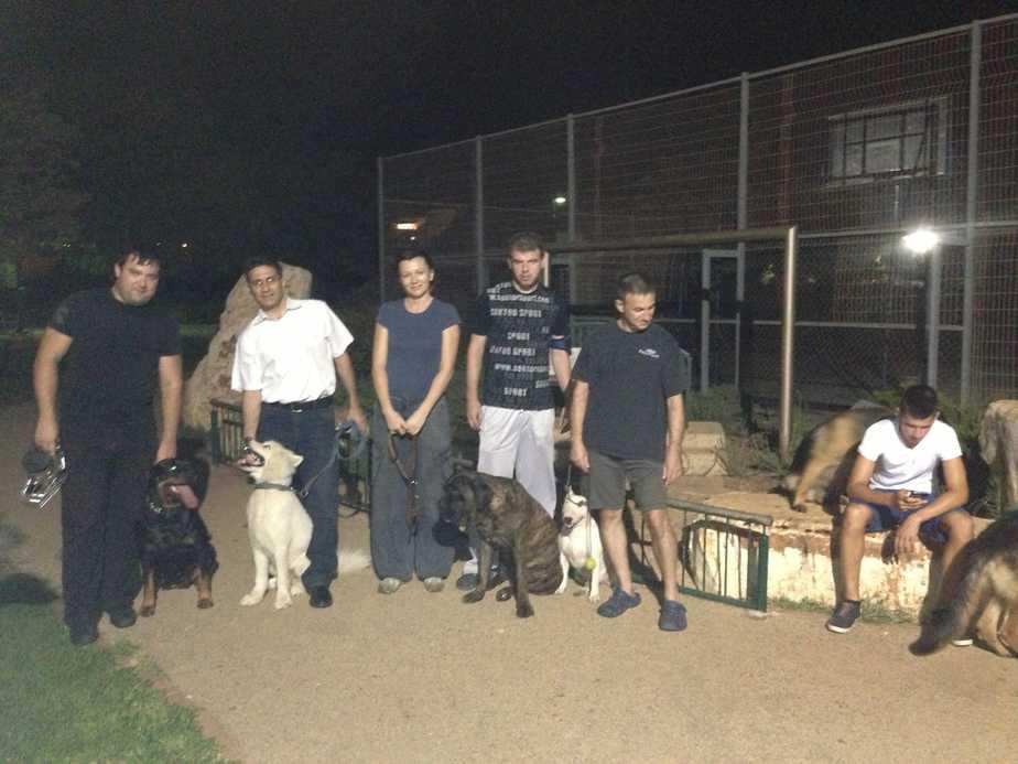 תושבי כרמיאל רוצים גינות כלבים