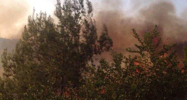 שריפה במעלות תרשיחא (צילום: נועם אמיר)