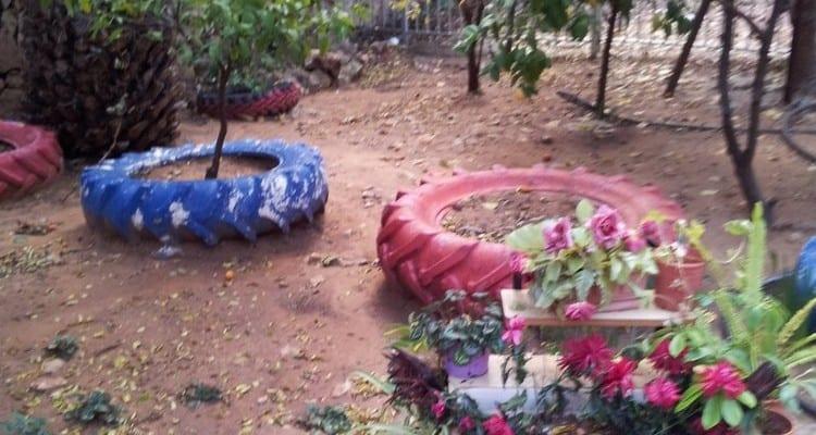 גן הברון בזכרון יעקב (צילום: סהר צוק)