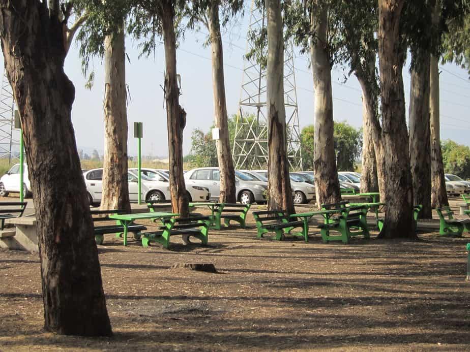 פארק בקרית ביאליק