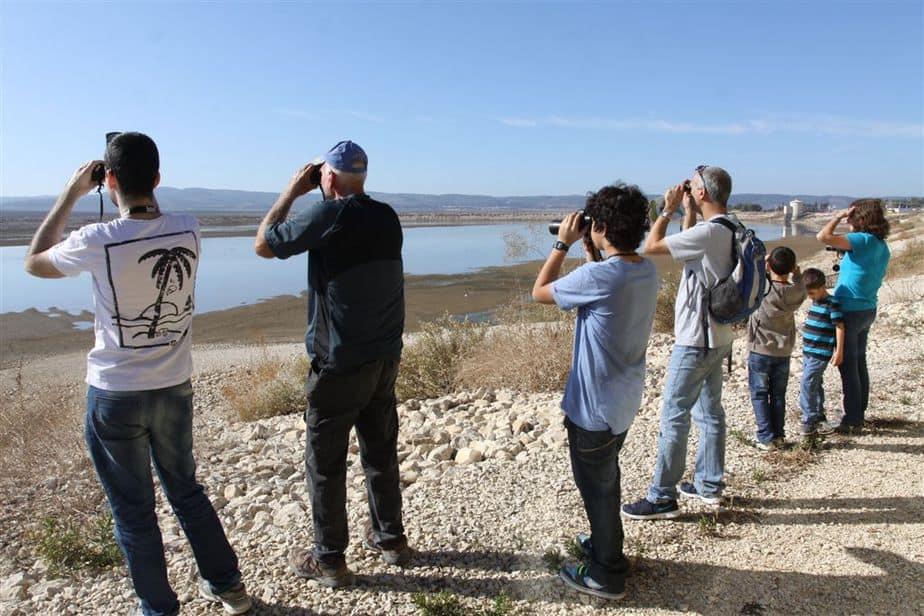 משקיפים אל הציפורים באגם ברוך. צילום : יואב בכר
