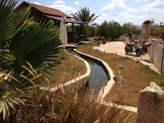 חוות איילה (צילום: עצמי)