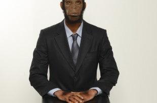 מאופר כמו קוף צילום: אבי משולם