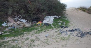 אחד החופים המלוכלכים בחוף הכרמל (צילום: גליה פסטרנק)